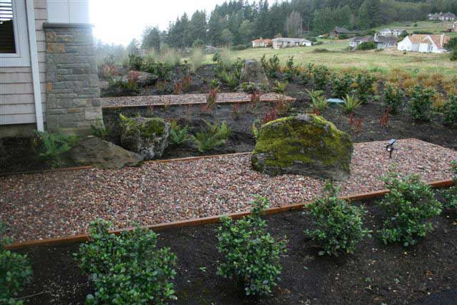 gravel beds surrounded by plant beds with small bushes