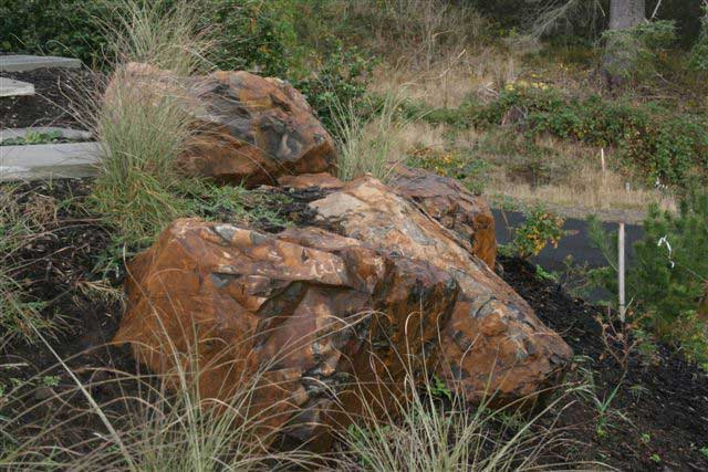 jagged boulders in plant bed of native grasses