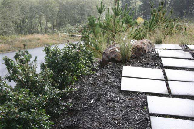 square tile path alongside mulch planter with rock and plants