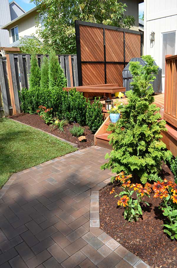 mulched plant beds with small evergreens in front of wood deck with covered barbeque