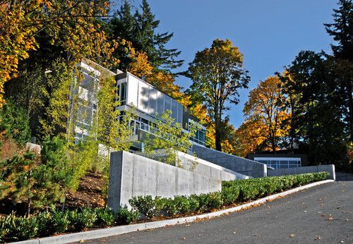 modern concrete and glass home surrounded by autumn trees and low hedges
