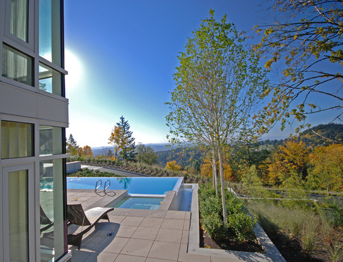 modern concrete patio with infinity pool and inset tree planters