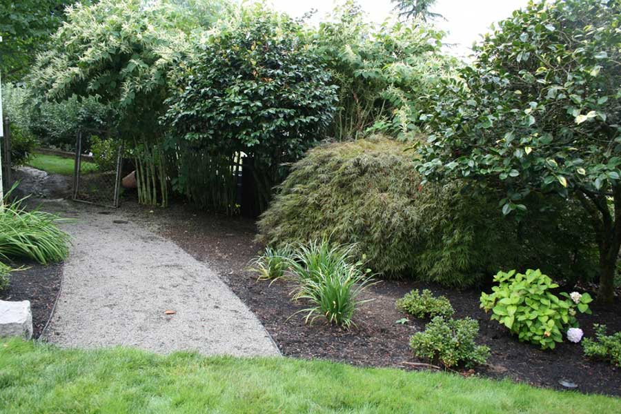 gravel path lined with plants and trees