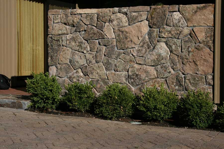 flagstone wall behind 5 small bushes in planter