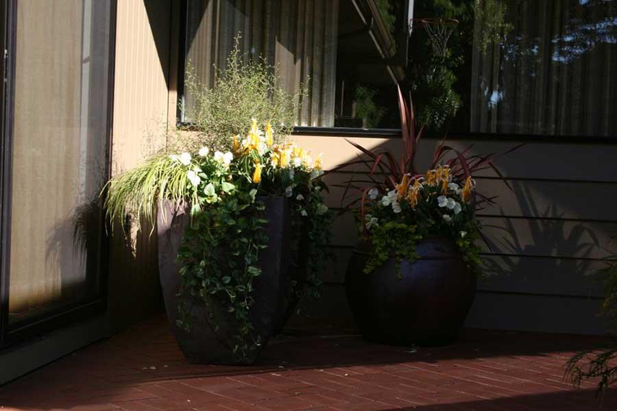 large flowerpots on red brick walkway