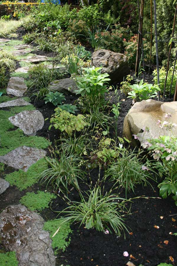 natural stone walkway with plants and moss