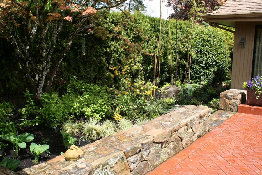 shaded garden between tall hedges and low natural stone wall