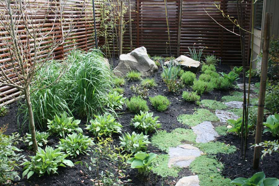 wild plants garden with natural stone path and horizontal slat wooden fence 3