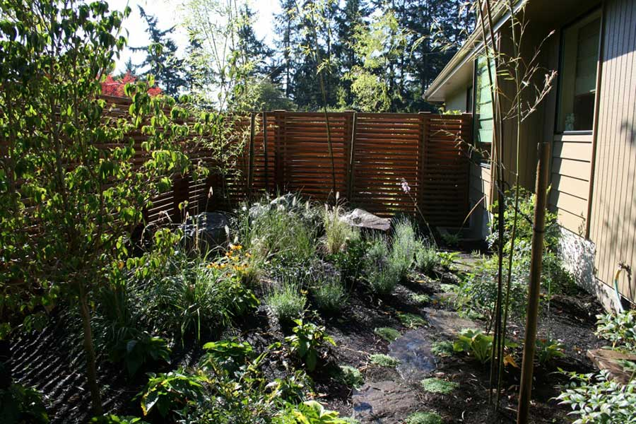 wild plants garden with natural stone path and horizontal slat wooden fence