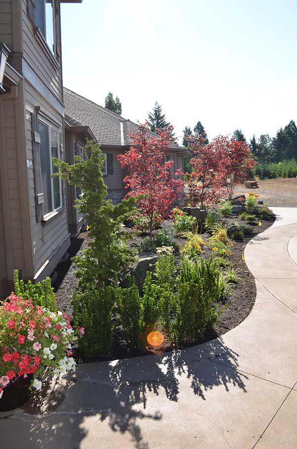 curving concrete front walkway with large and vried plant bed