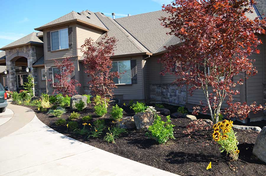 front entry way and driveway with diverse plant bed alongside house