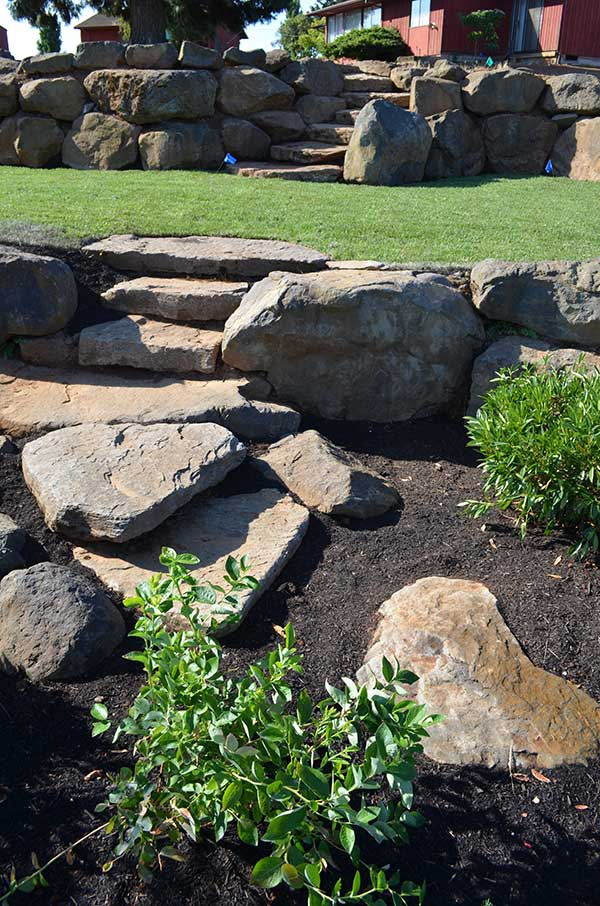 plant bed with large flagstone steps to turf lawn terrace