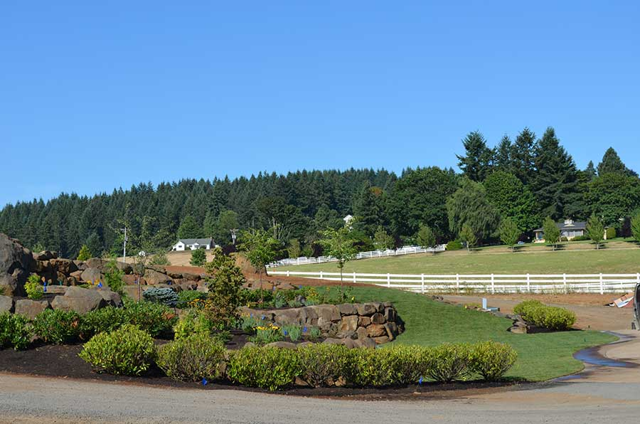 wide angle view of entire front landscaped yard