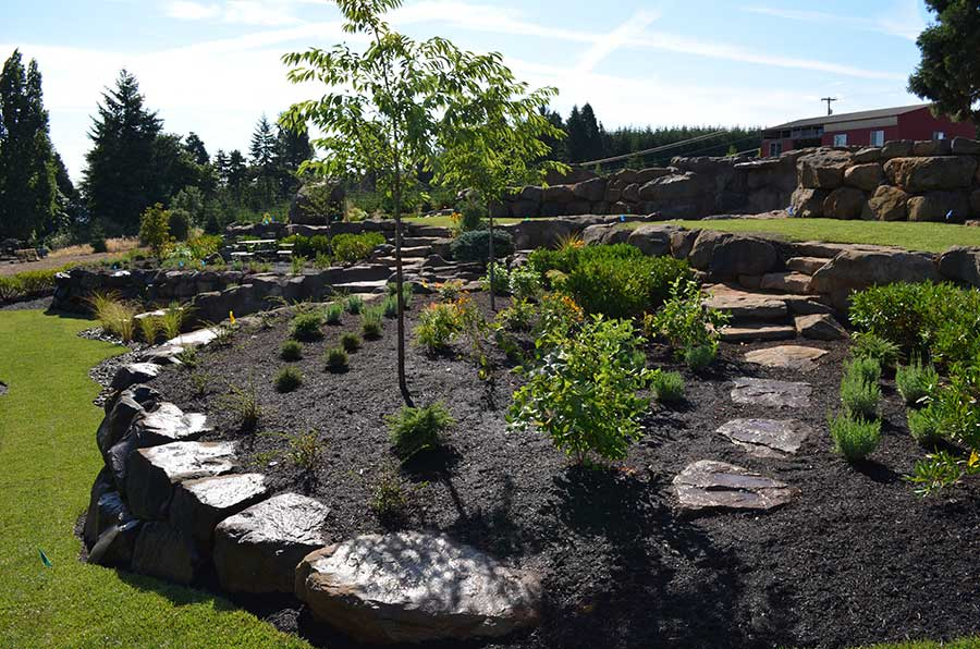 wide angle view of house and terraced front yard with multiple layers of plant beds and turf lawn